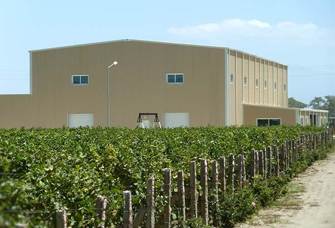Création cave vinicole Groupe Castel à Ziway en Ethiopie Batiment bureau d'études vinicoles INGEVIN