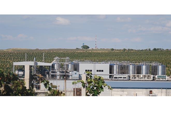 Création cave vinicole société Inkermann Chernomorets panoramique Maitrise d